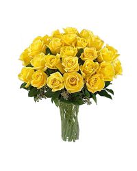 Yellow Roses. Ufa